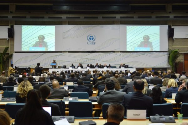 Takeaways from UNEA 5.1 for the 2022 declaration